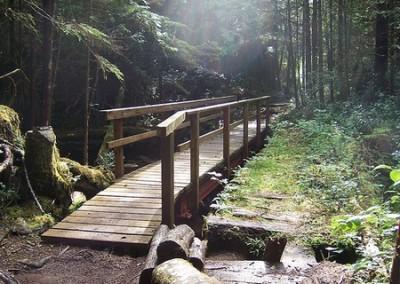 Bridge along the trail to San Josef Bay