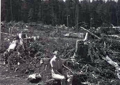 """Frank, the """"old country"""" logger, reflecting on the beauty and majesty of clearcut logging in our beloved """"Clearcut Log Garden""""  (taken in 1970 or 71 or something)"""