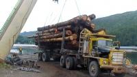 logging-a-frame-holberg1